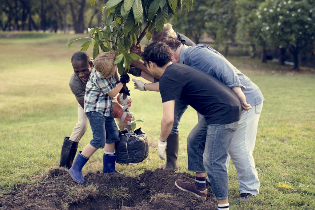 projet collectif plantation darbres